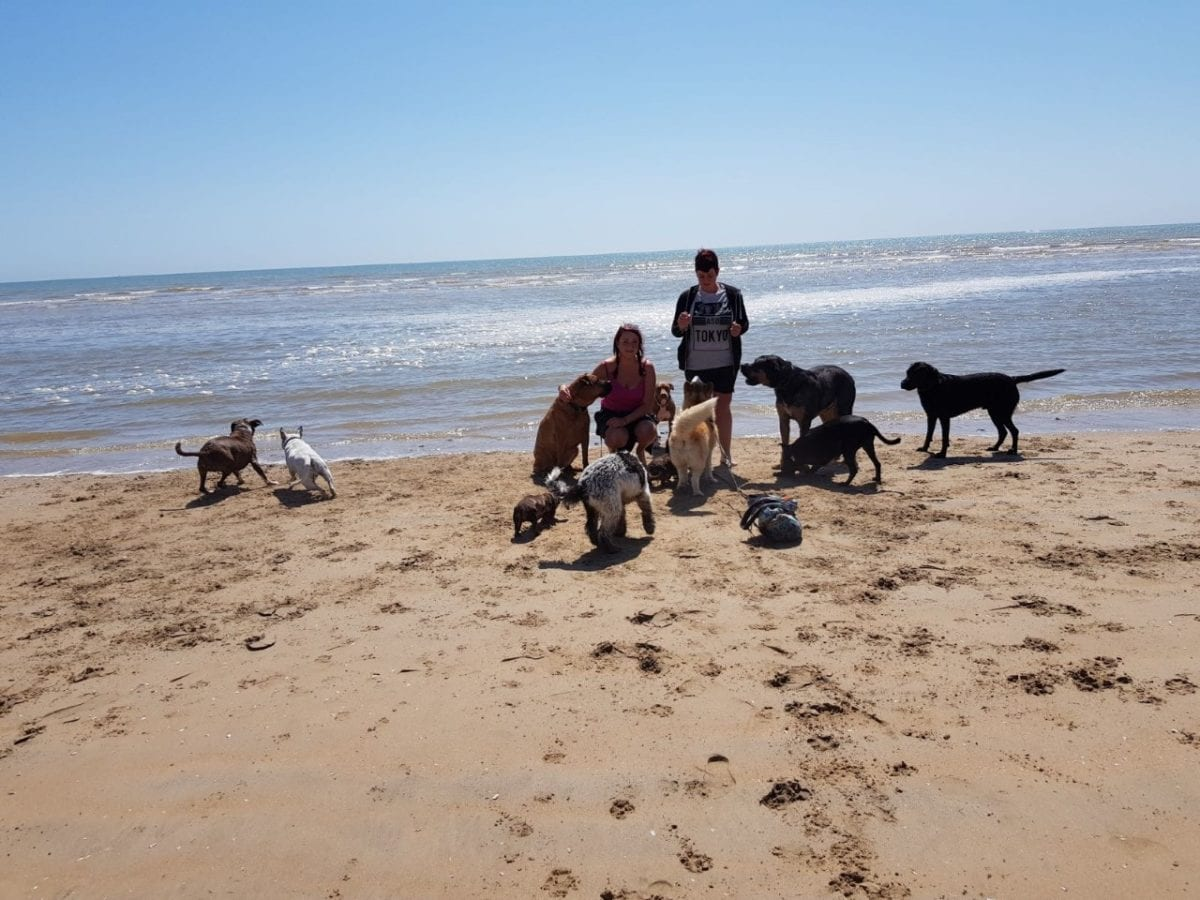 Beach day out: £30 full day