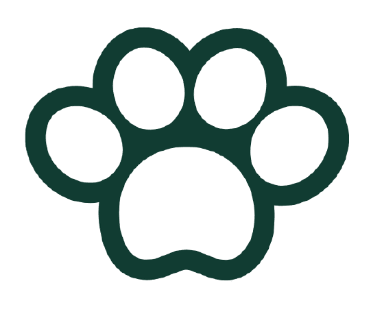 dog walking services and prices in Snodland