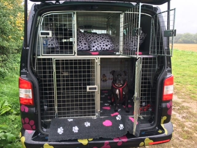 black dog walking services van in Snodland with a cute dog with a red collar sitting inside